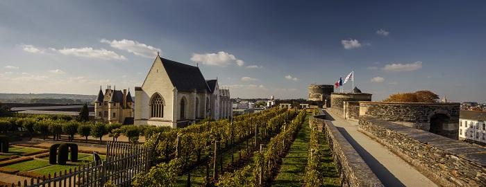 Chateau_d_Angers_Ville_d_Angers_L._de_Serres_2.jpg